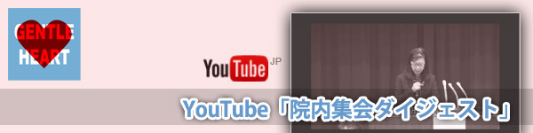 院内集会『学校事件事故の重大事案における初動調査と情報共有の重要性について考える勉強会』Youtube追加