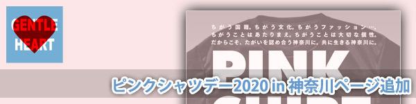 ピンクシャツデー2020 in 神奈川 「いじめストップ!」ワールドアクション